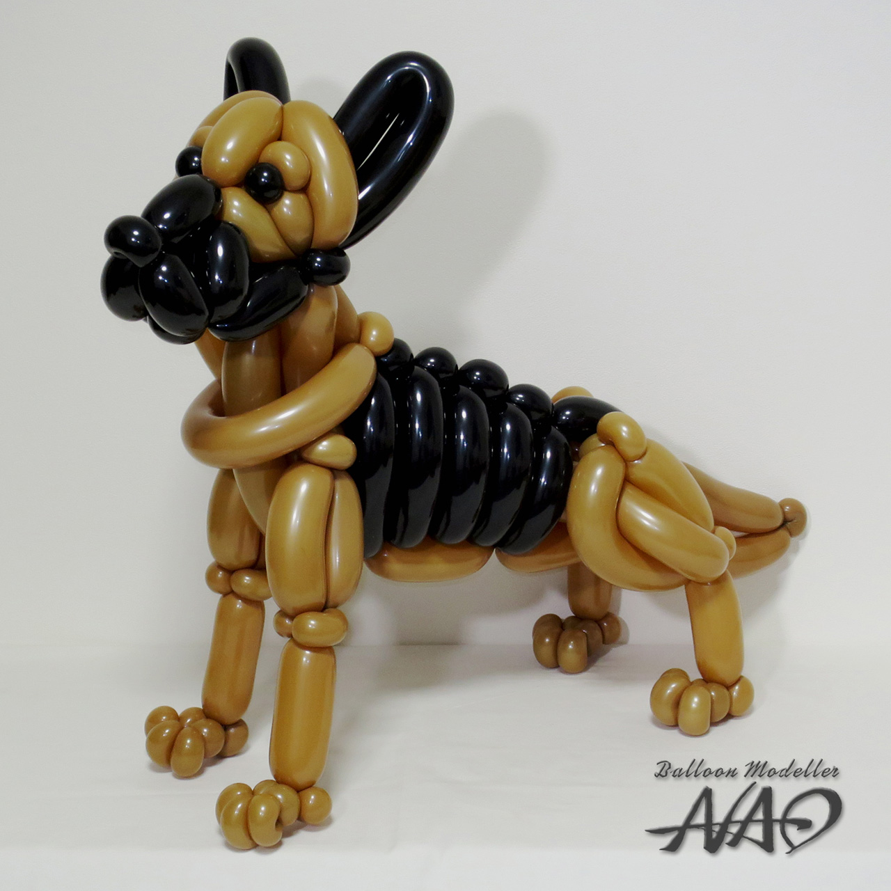 How To Make A Balloon Dog With Pictures